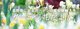 ガーデン花だより
